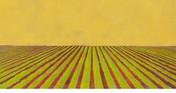 Crop+Dusters-wb